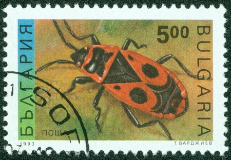 BULGARIA-CIRCA 1993  A stamp printed in the Bulgaria, shows the insect, Firebug, circa 1993 photo