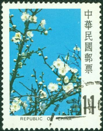 REPÚBLICA DE CHINA TAIWAN - CIRCA 1983 Un sello impreso en la imagen de Taiwan muestra la flor del ciruelo, circa 1988