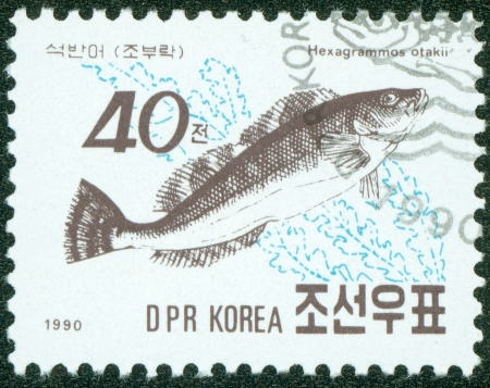 postmail: DPR KOREA - CIRCA 1990  A post stamp printed in DPR Korea  North Korea  shows greenling fish  hexagrammos otakii , circa 1990 Stock Photo