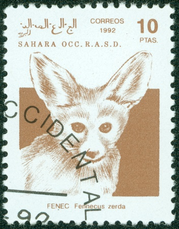 postman of the desert: SAHARA - CIRCA 1992  A stamp printed in Sahrawi Arab Democratic Republic  SADR , shows a Fennec Fox  Vulpes zerda , circa 1992 Stock Photo