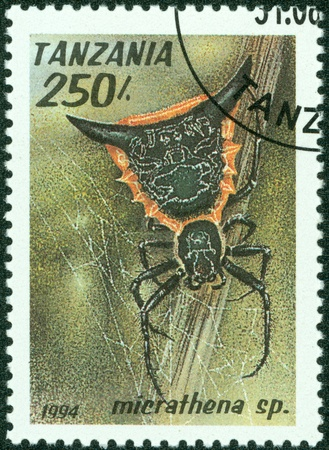 TANZANIA - CIRCA 1994  A stamp printed in Tanzania shows image of a micrathena sp , circa 1994 photo
