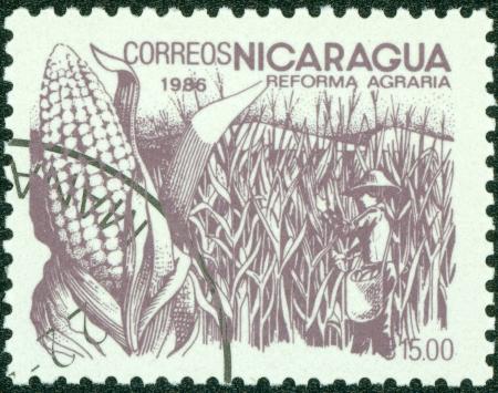 agrarian: NICARAGUA - CIRCA 1986  A stamp printed in Nicaragua shows image of agrarian reform, Corn, circa 1986