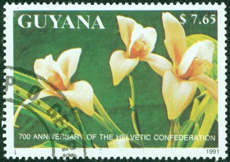 GUYANA - CIRCA 1991  A stamp printed in Guyana shows orchid flower, circa 1991 photo