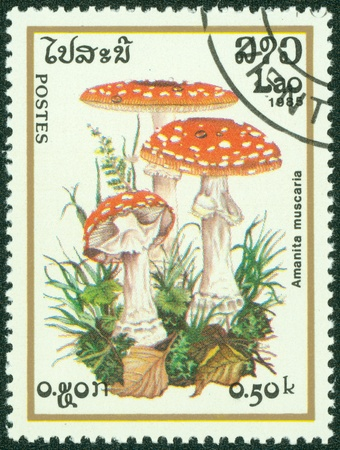 LAOS- CIRCA 1985  A stamp printed in LAOS, shows Poisonous mushroom, circa 1985 Stock Photo - 14830424