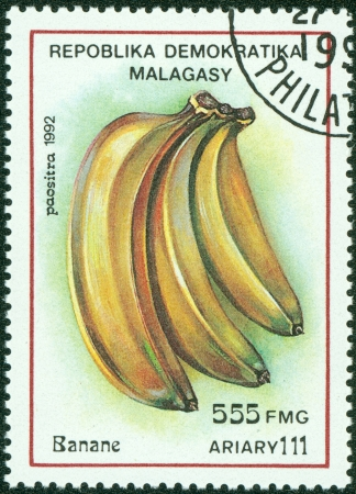 MADAGASCAR - CIRCA 1992  Postage stamps printed in Madagascar, is shown banana, circa 1992 photo
