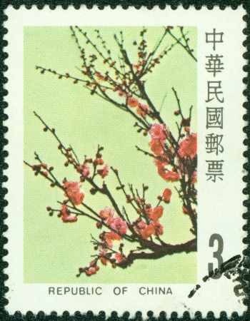 REPUBLIC OF CHINA  TAIWAN  - CIRCA 1984  A stamp printed in the Taiwan shows image of Plum Blossom, circa 1984 Stock Photo