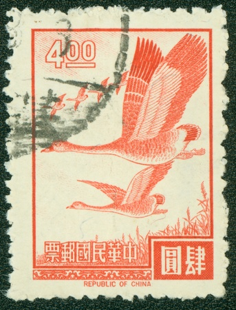 REPUBLIC OF CHINA  TAIWAN  - CIRCA 1975  A stamp printed in the Taiwan shows image of wild goose, circa 1975