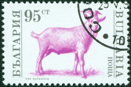 postmail: BULGARIA - CIRCA 1992  A stamp printed in Bulgaria shows a goat, circa 1992