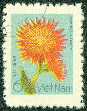 VIETNAM - CIRCA 1978  A stamp printed in Vietnam, depicted blooms Marguerites, circa 1978
