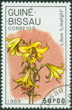 GUINEA - CIRCA 1989  A stamp printed in GUINEA shows lilium limelight, circa 1989 Stock Photo - 15245990