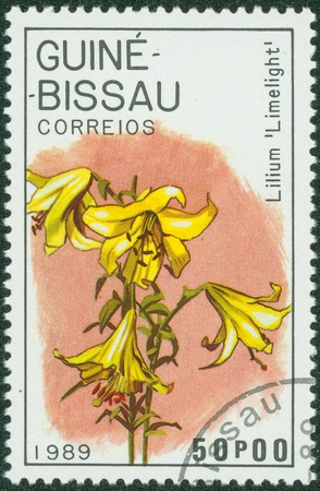 limelight: GUINEA - CIRCA 1989  A stamp printed in GUINEA shows lilium limelight, circa 1989