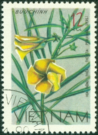 VIETNAM - CIRCA 1978  A stamp printed in Vietnam shows Nerium oleander - Thevetia Peruviana, series, circa 1978