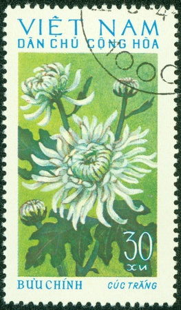 postmail: VIETNAM - CIRCA 1970  A stamp printed in Vietnam shows red chrysanthemum, circa 1970