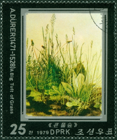 durer: Corea del Nord - CIRCA 1979 Un timbro stampato in Corea del Nord mostra ciuffo d'erba di Albrecht Durer, circa 1979