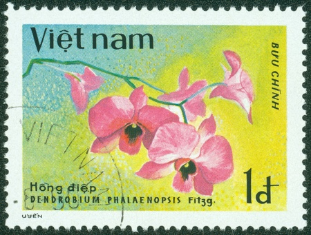 VIETNAM - CIRCA 1979  A Stamp shows image of a Dendrobium with the inscription  Dendrobium Phalaenopsis , from the series  Orchids  , circa 1979