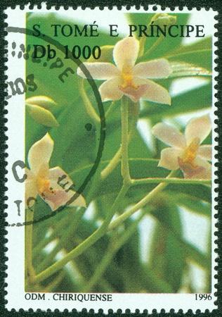 principe: SAO TOME Y PRINCIPE - alrededor de 1996 Un sello impreso en Sao Tome y Principe imagen muestra de flor, alrededor de 1996 Foto de archivo