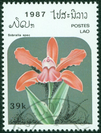 LAOS - CIRCA 1987  A stamp printed in Laos shows Sobralia spec, series, circa 1987 Stock Photo - 15621741