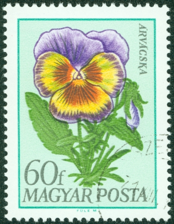 HUNGARY - CIRCA 1968  stamp printed by Hungary, shows flower, circa 1968 photo