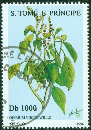 S TOME E PRINCIPE -CIRCA 1996  A post stamp printed in S Tome e Principe shows plant, circa 1996 photo