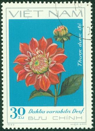 VIETNAM - CIRCA 1982  A stamp printed in Vietnam shows red dahlia, series devoted to dahlias, circa 1982 Stock Photo - 15670582