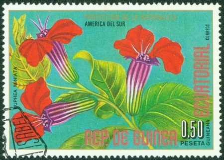 equatorial guinea: EQUATORIAL GUINEA - CIRCA 1976  A stamp printed in Equatorial Guinea, shows Cuphea miniata, series South American Flowers, circa 1976