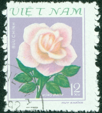 VIETNAM - CIRCA 1979  A Stamp printed in Vietnam shows Rose, circa 1979