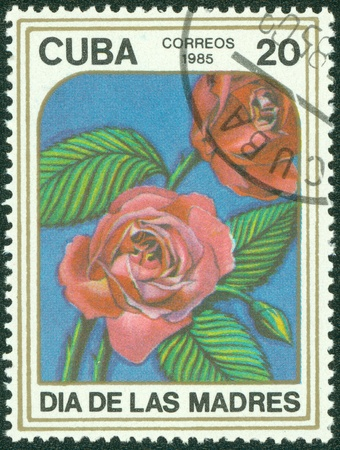 CUBA - CIRCA 1985  A stamp printed in CUBA shows Two roses , circa 1985 Stock Photo - 15670612