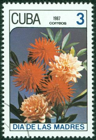 CUBA - CIRCA 1987  A stamp printed in Cuba shows a red aster , circa 1987 Stock Photo - 15670583
