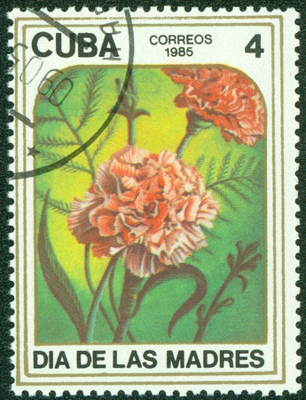 CUBA - CIRCA 1985  A stamp printed in CUBA shows Two carnations , circa 1985 Stock Photo - 15670604