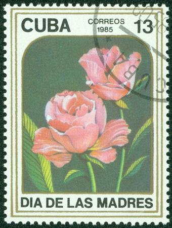 CUBA - CIRCA 1985  A stamp printed in CUBA shows Two roses, circa 1985 Stock Photo - 15836153