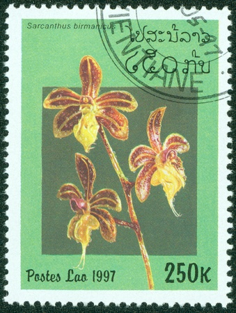 LAOS - CIRCA 1997  A stamp printed in Laos shows Sarcanthus birmanicus, series is devoted to orchids, circa 1997 Stock Photo - 15836188