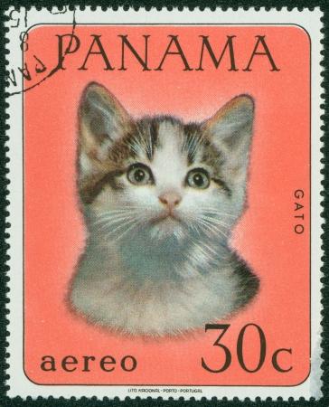 PANAMA - CIRCA 1980  A stamp printed in Panama shows a cat, circa 1980