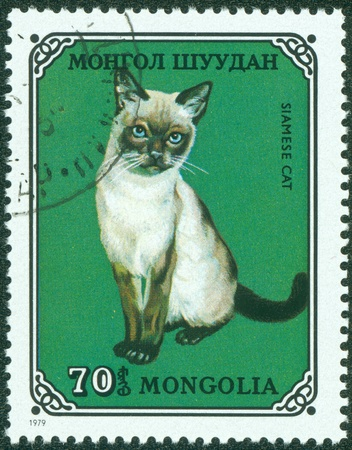 MONGOLIA - CIRCA 1979  stamp printed by Mongolia, shows cat, Siamese, circa 1979  Stock Photo - 15854960