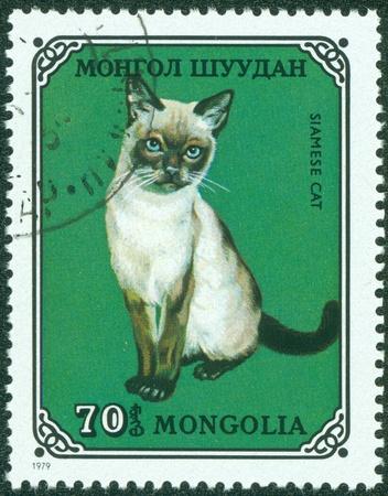 MONGOLIA - CIRCA 1979  stamp printed by Mongolia, shows cat, Siamese, circa 1979  Stock Photo - 15854960