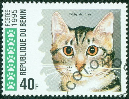 Republique du Benin - CIRCA 1995  A stamp printed in Republique du Benin shows Domestic cat, Shorthair tabby, circa 1995 Stock Photo - 15854951