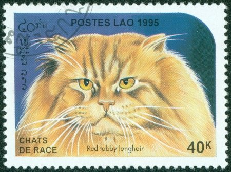 LAOS - CIRCA 1995  A stamp printed in Laos shows a cat, circa 1995 Stock Photo - 15854962