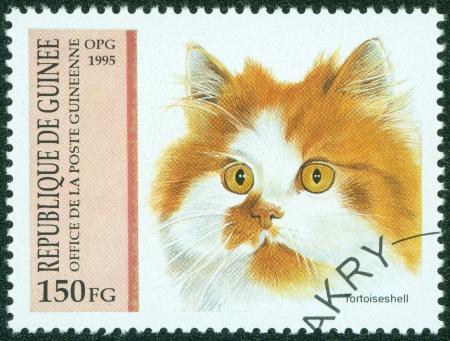 GUINEA - CIRCA 1995  A stamp printed in Guinea shows Tortoiseshell, circa 1995