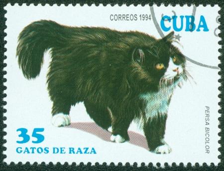 CUBA - CIRCA 1994  A stamp printed in Cuba shows Persa Bicolor, circa 1994 Stock Photo - 15854977
