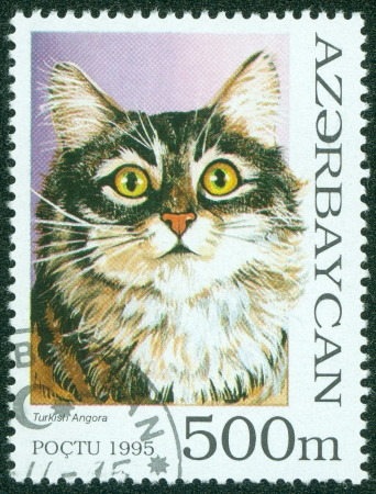 AZERBAIJAN - CIRCA 1995  A stamp printed in Azerbaijan shows cat, circa 1995 Stock Photo - 15854916