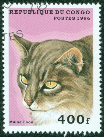CONGO - CIRCA 1996  A stamp printed in Congo shows cat, circa 1996  Stock Photo - 15854920