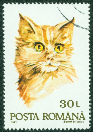 ROMANIA - CIRCA 1993  A stamp printed by Romania, shows a cat, circa 1993