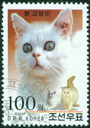 DPR KOREA - CIRCA 2002  A stamp printed in DPR KOREA shows cat, circa 2002