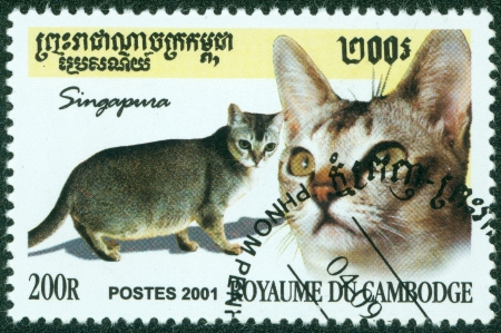 KAMPUCHEA-CIRCA 2001  A stamp printed in the Cambodia, depicts the domestic cat, circa 2001