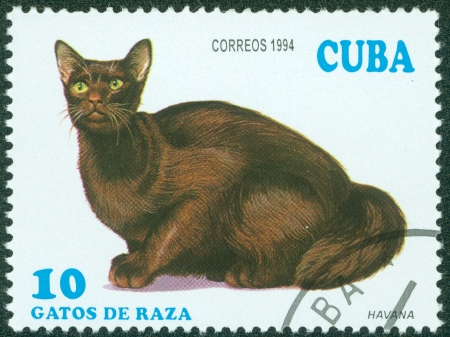 CUBA - CIRCA 1994  A stamp printed in Cuba shows Havana, circa 1994 Stock Photo - 15854934