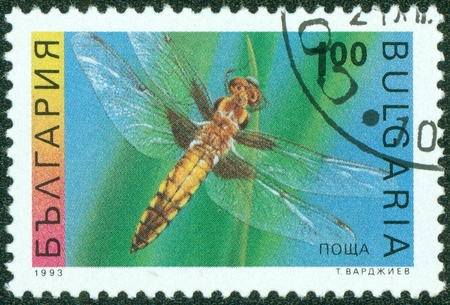 chaser: BULGARIA-CIRCA 1993  A stamp printed in the Bulgaria, shows the insect, Four-spotted Chaser, circa 1993