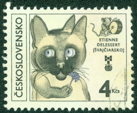 czechoslovakia: CZECHOSLOVAKIA - CIRCA 1981  A stamp printed in the Czechoslovakia, is dedicated to 8th Biennial Exhibition of Children s Book llustrations, shows Cat Holding Flower by Etienne Delessert, circa 1981