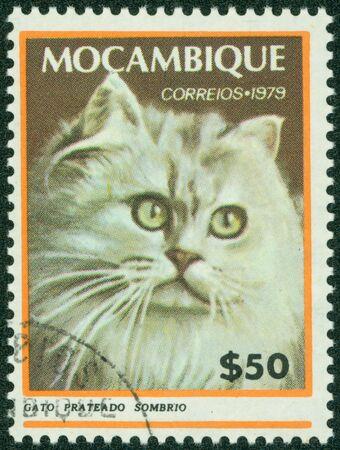 MOZAMBIQUE - CIRCA 1979  A stamp printed in Mozambique, shows Cat, circa 1979 Stock Photo - 16059514