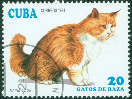 canceled: CUBA - CIRCA 1994  A stamp printed in Cuba shows Maine Coon, circa 1994