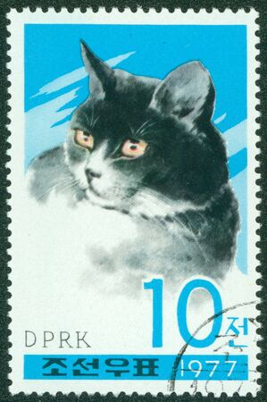 canceled: NORTH KOREA - CIRCA 1977  A stamp printed in North Korea, shows a house cat, circa 1977
