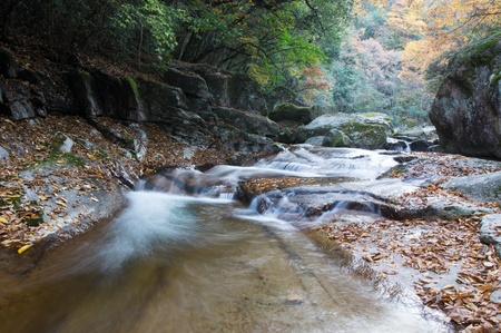 autumn,forest and stream Stock Photo - 16137147